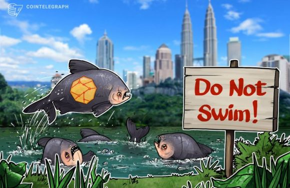 Malaysia's Watchdog Orders Immediate Stop to Beauty Guru Lavidacoin Promotion