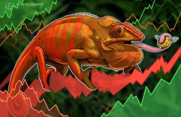 Lacklustre Markets See Bitcoin Dip Below $6,600, Top Altcoins See Minor Losses