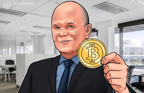 Bitcoin Won't Break $9,000 This Year, Galaxy Digital's Novogratz Says