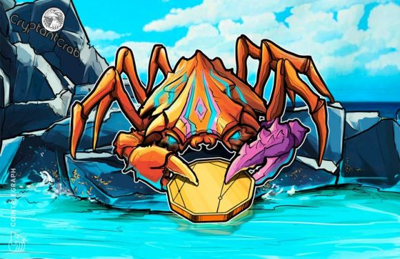 Crab War on Blockchain: Long-Time Developer Launches Its First Crypto Game