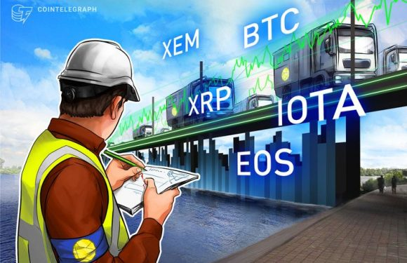 Top 5 Crypto Performers Overview: XEM, Ripple, EOS, Bitcoin, IOTA