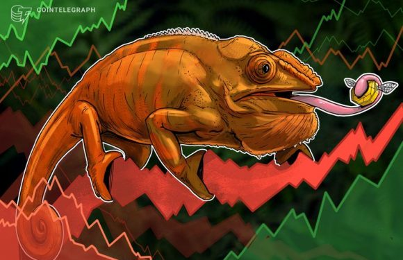 Bitcoin Price Near $3,400, Wider Crypto Markets See Another Mild Slump