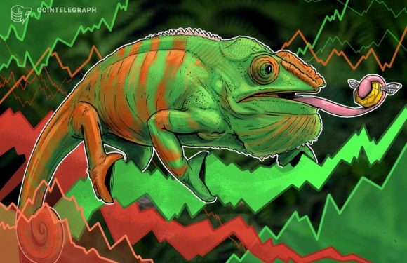 Crypto Markets See Mixed Signals After Recent Downturn