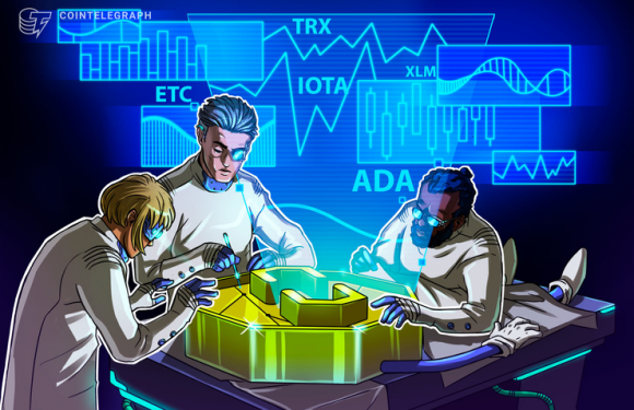 Top-5 Crypto Performers: ETC, IOTA, ADA, TRX, XLM