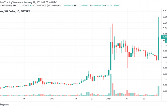 Dogecoin to 1 dollar? Reddit turns to DOGE after GameStop surges 1,600% in 2 weeks